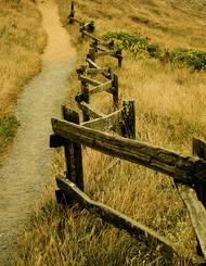 围栏,丝毫不会增加你我的距离