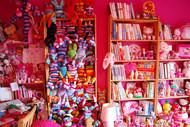 这样的房间会不会有种是公主的感觉尼?—粉嘟嘟公主。。。