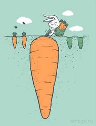 别让过去的悲催,或者未来的忧虑,毁掉自己当下的快乐。丨插画师:smogy_cel1