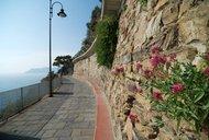 旅游行摄:被花海堙没的城市——意大利五渔村17