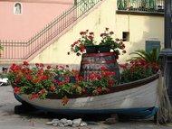 旅游行摄:被花海堙没的城市——意大利五渔村22