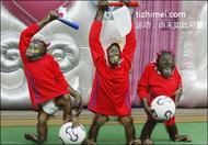 踢球咯…中国队加油,加油中国队!