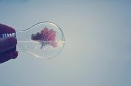 观念摄影:小灯泡 大世界9