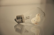 观念摄影:小灯泡 大世界11