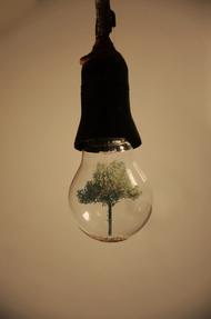 观念摄影:小灯泡 大世界