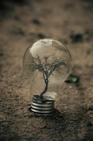 观念摄影:小灯泡 大世界  14