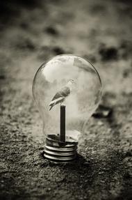 观念摄影:小灯泡 大世界15