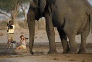 1994年博茨瓦纳,探险家们在非洲为数不多的自然区极近距离拍摄一只大象。(摄影师:Beverly Joubert)  纪实摄影:国家地理10张经典照