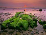 Ian Cameron拥有20年的专业经验,专精于风光和旅行摄影。他有大量作品被杂志刊登,包括《户外摄影》、《实用摄影》、《业余摄影师》和《摄影月刊》等。这里为大家带来的是一组来自Cameron的精彩自然风光摄影作品