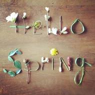 春天,你好。