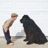 Stasha拍摄的她四岁的儿子Julian和五岁的MAX(一只巨型犬)。