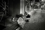 日本摄影师池口正和(Masakazu Ikeguchi)作品:东京流浪猫