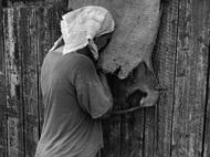 Jindřich Štreit,捷克著名摄影师,出生于1946年,1964年开始从事摄影,以纪实摄影作品著称,专注于记录乡村生活和捷克农村的人们