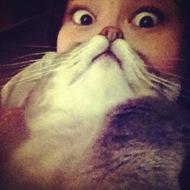 猫奴伤不起啊!哈哈~~胡子很特别么!
